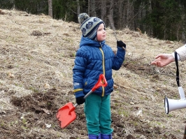 100 ozolu meža stādīšana Lūznavā