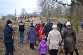 100 ozolu meža stādīšana Lūznavā_48