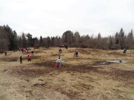 100 ozolu meža stādīšana Lūznavā_40