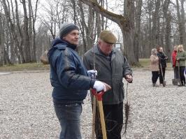 100 ozolu meža stādīšana Lūznavā_6